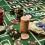 5 lời khuyên khi chơi casino online